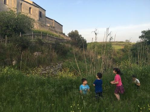 Ai bordi del campo di saragolle sotto la Chiesa della Madonna della Sperlonga a Palomonte
